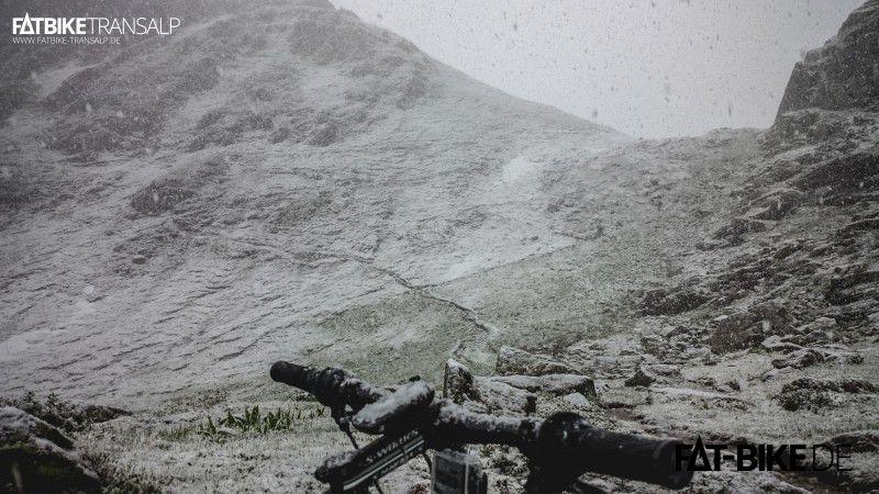 Gewohnter Anblick: Fatty im Schnee!