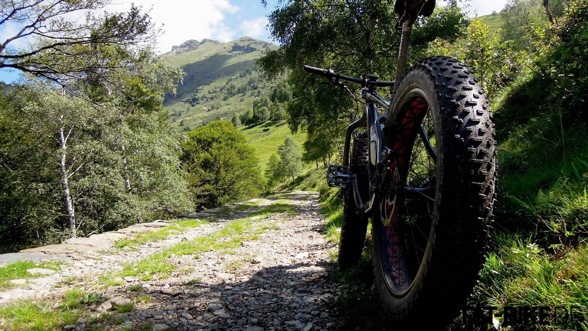 Almwiese zum Monte Legnone