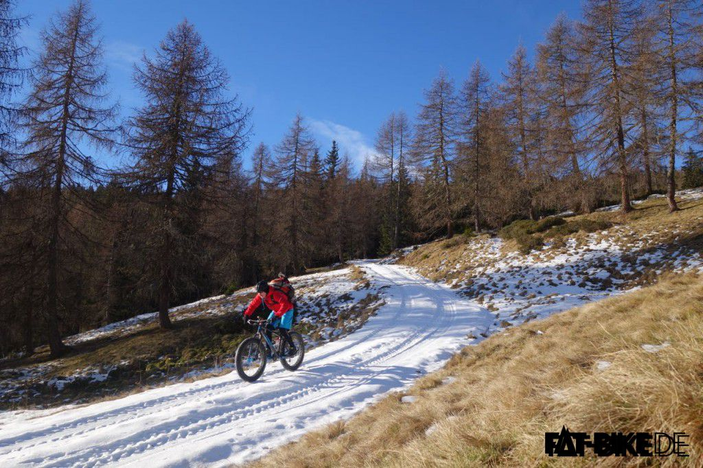 Nur das knirscheln des Schnees durchbricht die Stille der Alpenwälder