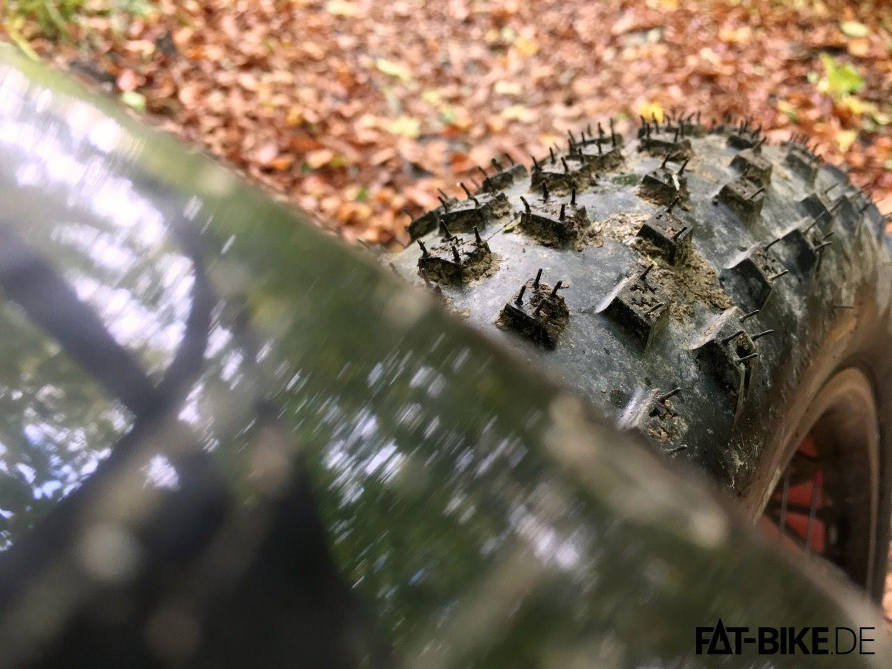 Auch wenn sich Schlammlöcher unter'm Laub verstecken, macht der 3,8 Zoll breite Bontrager Hodag nicht schlapp