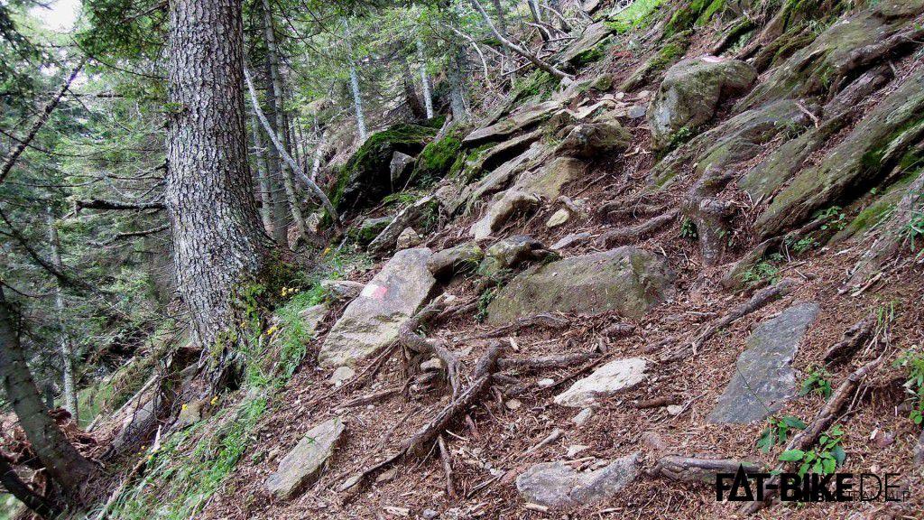 Äußerst ruppig, der Trail 1B