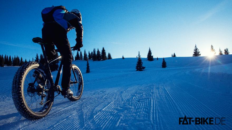 Trek Farley 2015 auf Schnee in Action