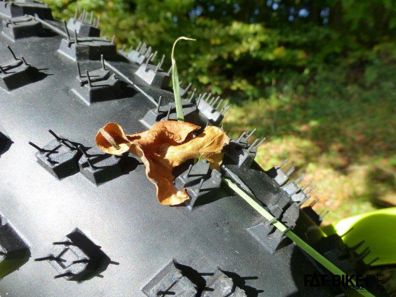 Noch Jungfrau: der Ground Control Fat. Die Blätter habe ich drauf gelegt damits geiler aussieht. Sonst nichts.