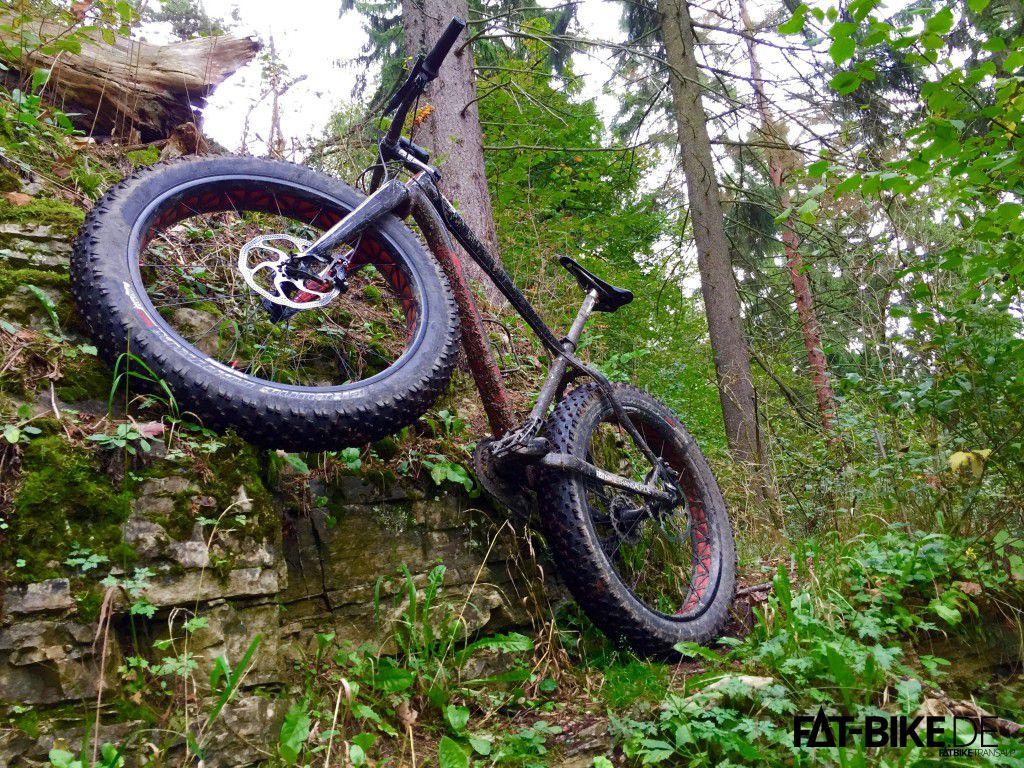 FAT-Bike.de mit Sticker für die Kettenstrebe