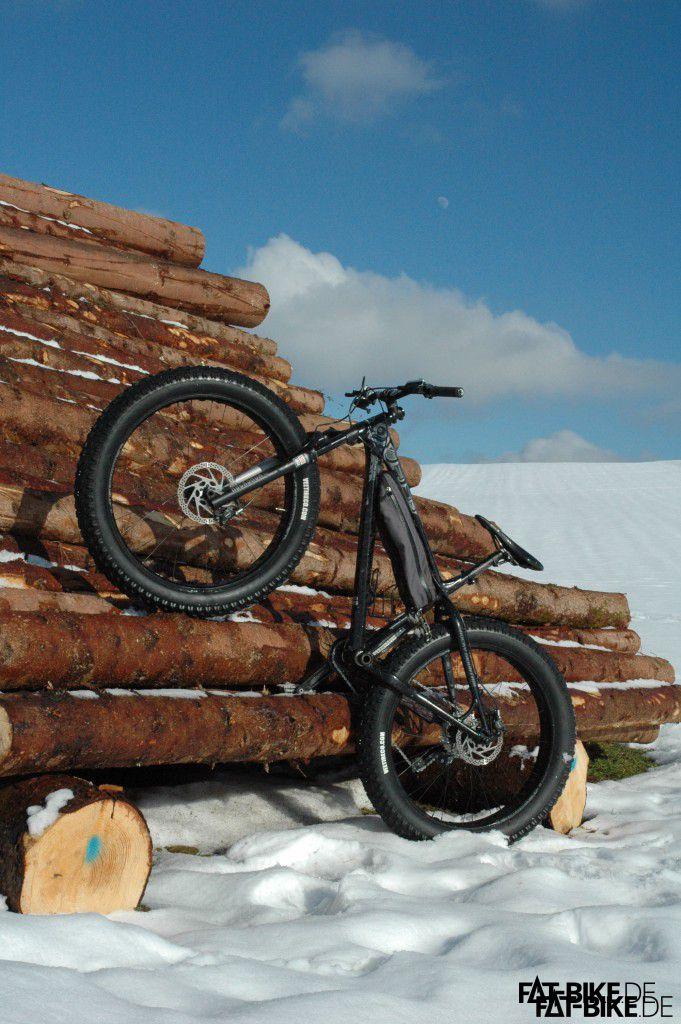 Stark wie ein Baum, das Rocky Mountain Blizzard