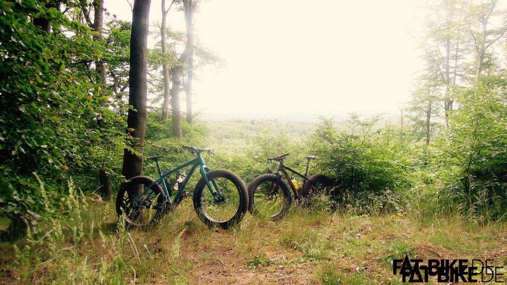 Zwei Fatties steh'n im Walde