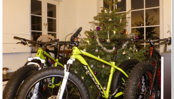 Specialized FatBoy Pro 2015 unter dem Weihnachtsbaum