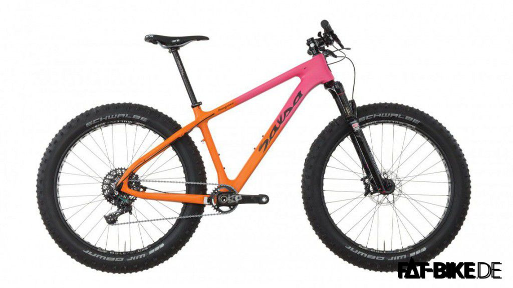 Salsa Beargrease Carbon SUS 2016
