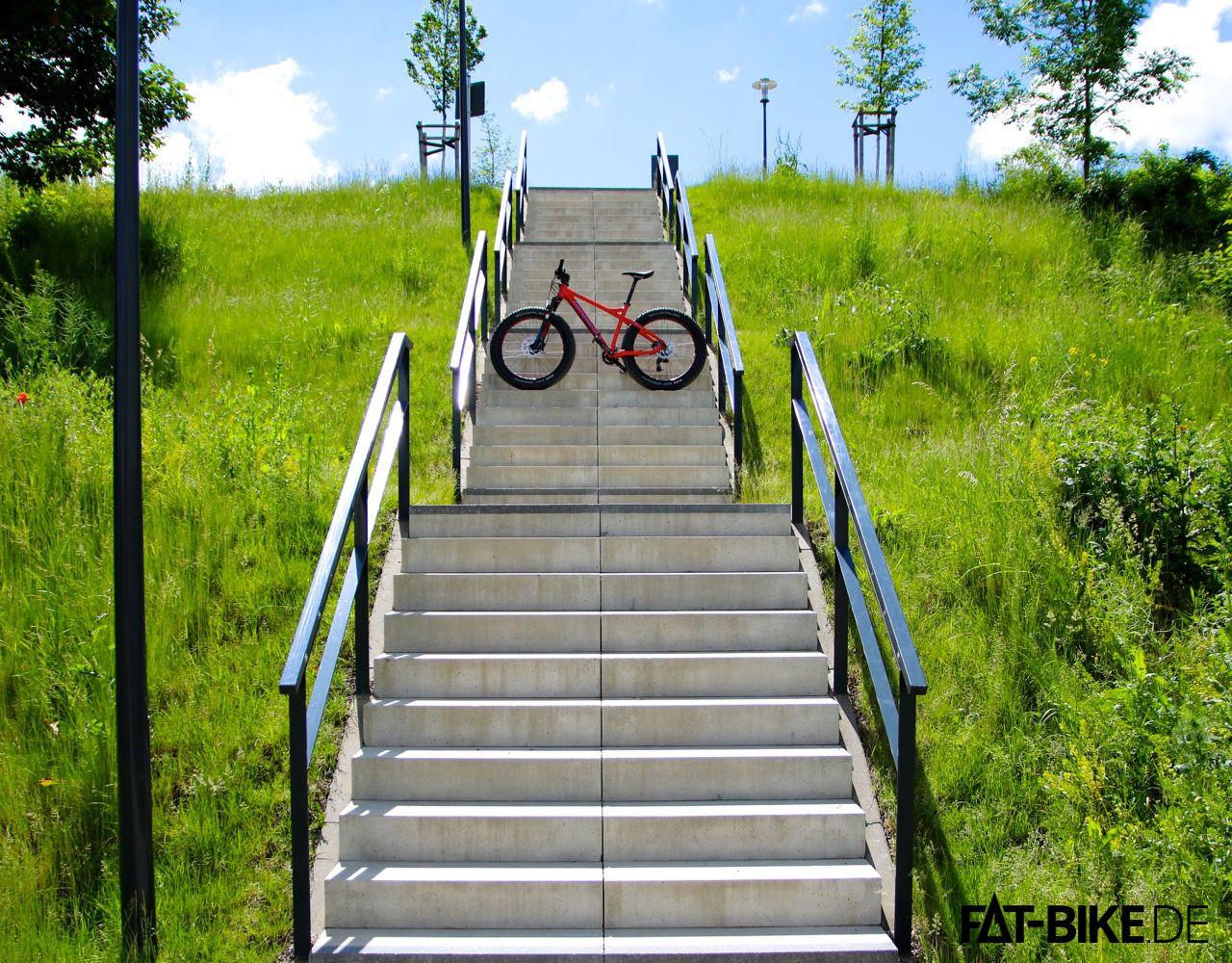 Stufe für Stufe Richtung Trail