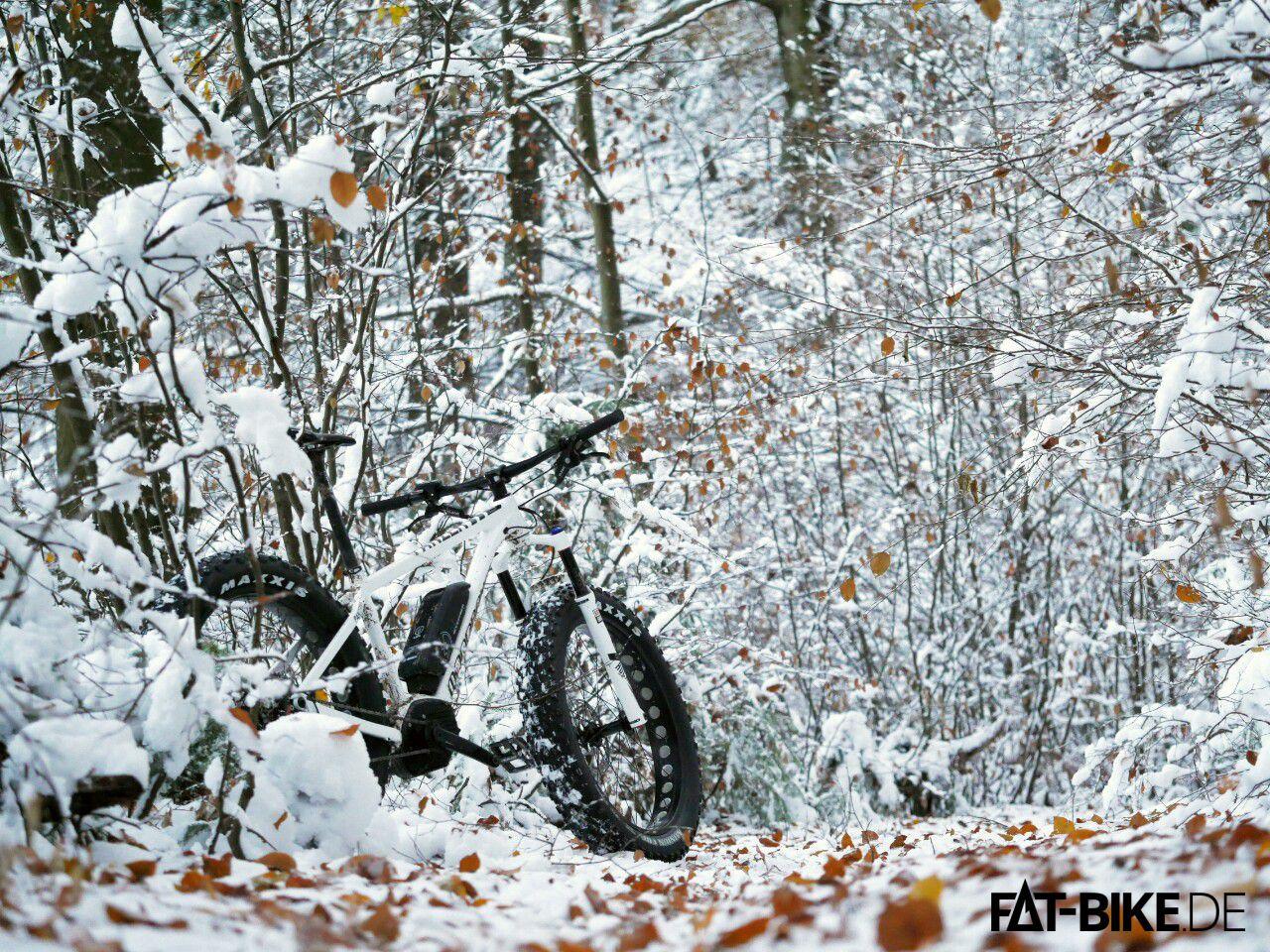 Auf Schnee nicht nur sexy sondern auch kaum aufzuhalten!