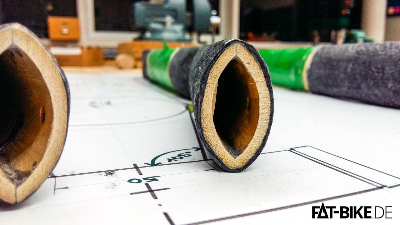 Querschnitt einer Bambus-Strebe