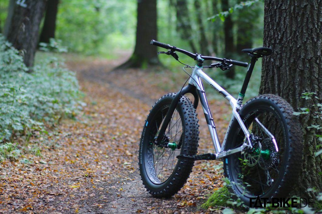 Ein Nicolai im Walde, ganz still und stumm.